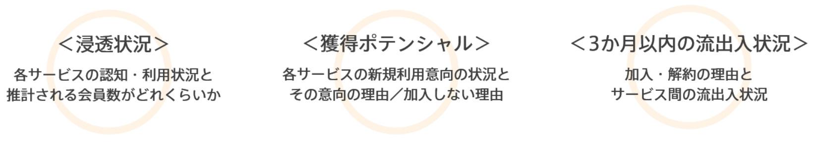 定額制動画配信サービス ブランド・ロイヤリティ調査の特徴